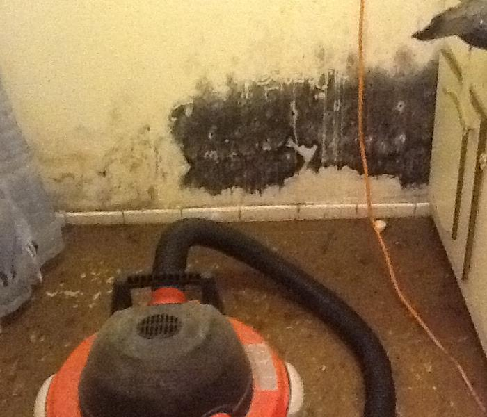 Mold Remediation in McLean, VA