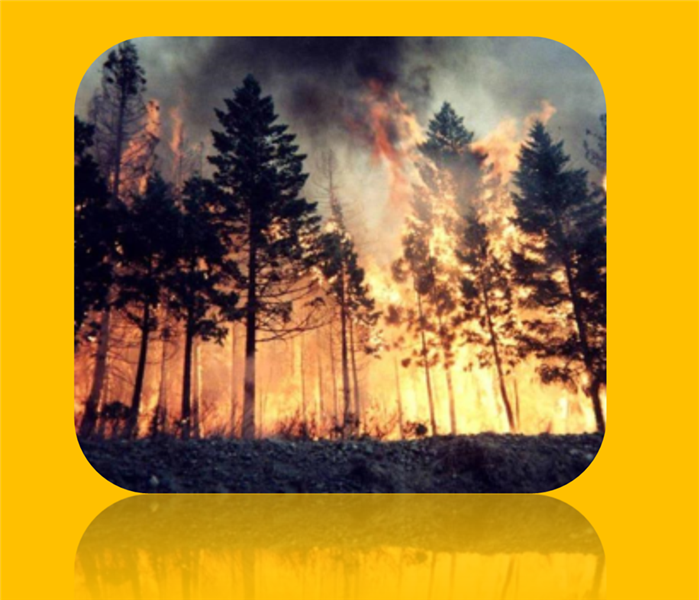 Fire Damage Wildfire Prevention Tips