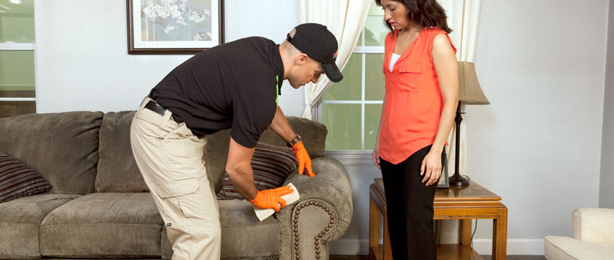 Annandale, VA carpet upholstery cleaning