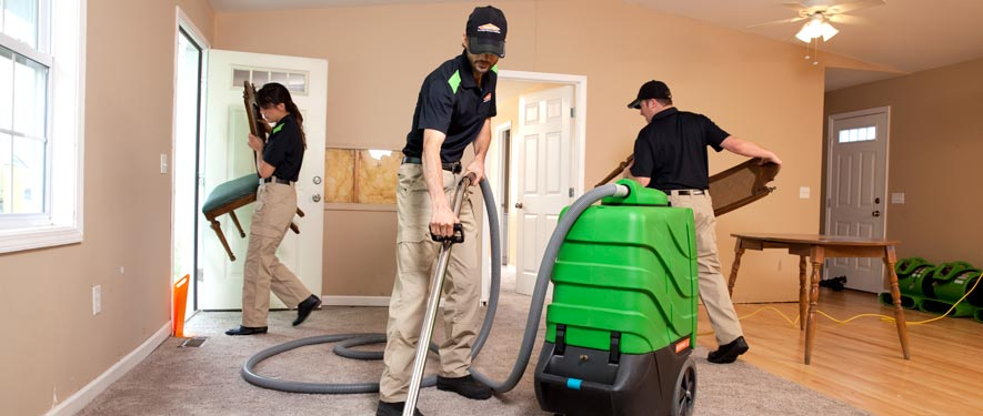 Annandale, VA cleaning services