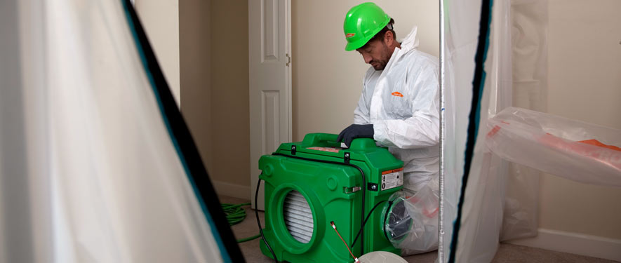 Annandale, VA mold cleanup